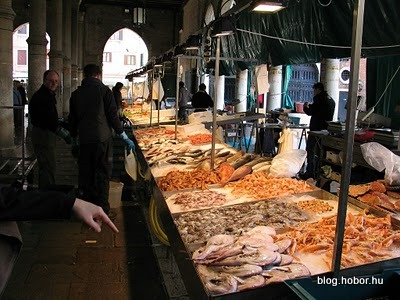 Fish Market in VENICE, Italy