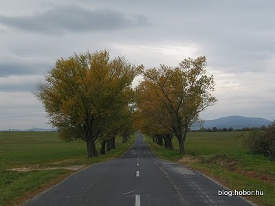 Near HAJMASKÉR, Hungary