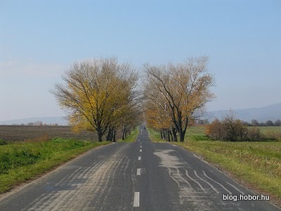 Near HAJMASKÉR, Hungary - This picture was taken two weeks later. Autumn is here.